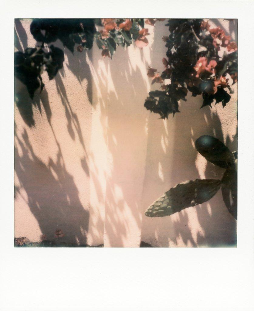 Untitled58.jpg